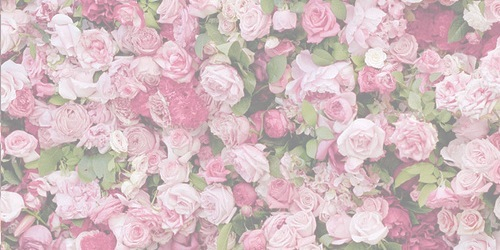 PINK DREAM ( twitter avatars + headers ) | Arab sone
